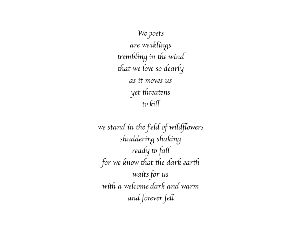 we poets